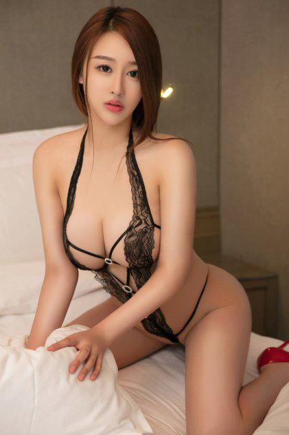 escorts in west york pa